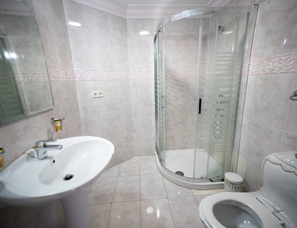 Penthouse_bathroom6